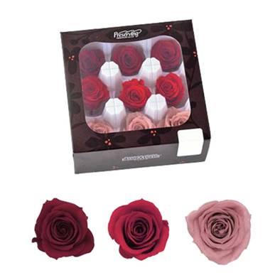 Mixed preserves box 9 pinks