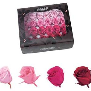 Mixed sweetheart box 24 pinks