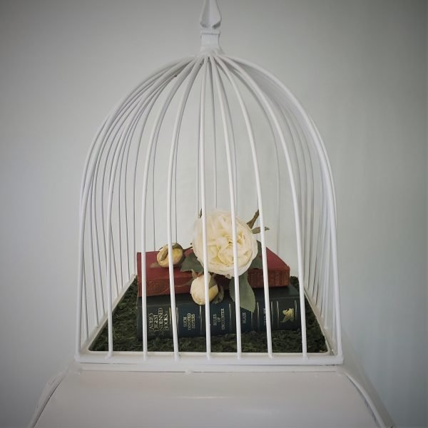 Bird cage 4 scaled