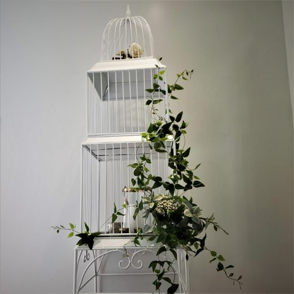 Bird cage scaled
